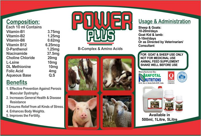 Meat Goat Farming Vitamin Supplement